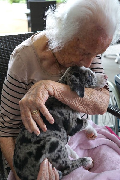 Love Blooms Between Aged Care Residents and Rescue Animals