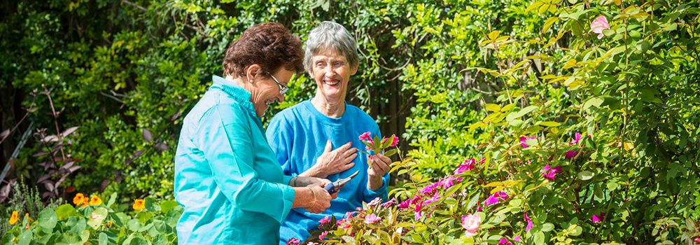 Alzheimer's QLD Community and Home Care Services (Brisbane North)